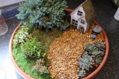Miniature Garden - 2020